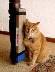 Kunduchi Super Catnip Cat Scratching Post with Sheath - Black