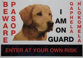 Marltons - Beware Of The Dog Sign - Labrador