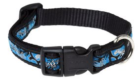 Rogz Fancy Dress Medium Scooter Dog Collar - Turquoise