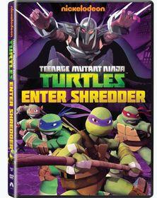 Teenage Mutant Ninja Turtles: Enter Shredder (DVD)