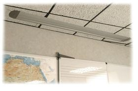 Parrot Ceiling Box - Grey