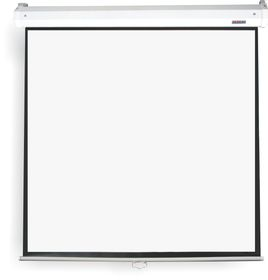 Parrot Pulldown Projector Screen - 1520 x 1520mm