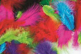Dala Craft Feathers - 6cm Assorted Colours  (Bag of 50)