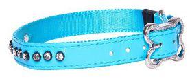Rogz Lapz 16mm Medium Luna Pin Buckle Dog Collar - Blue