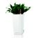 Lechuza - Maxi Cubi Table Planters - White Glossy