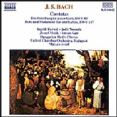 Ingrid Kertesi - Cantatas Bwv 80 & 147 (CD)