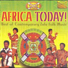 Africa Today - Best Of Contemporary Zulu Folk - Various Artists (CD)