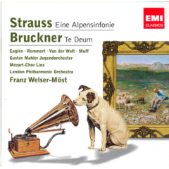 Welser-most Franz - Eine Alpensinfonie (CD)