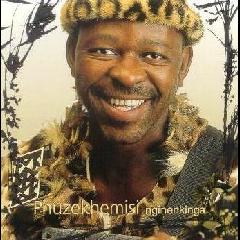 Phuzekhemisi - Nginenkinga (CD)