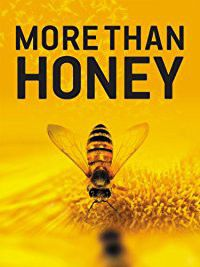 More Than Honey - (Region 1 Import DVD)