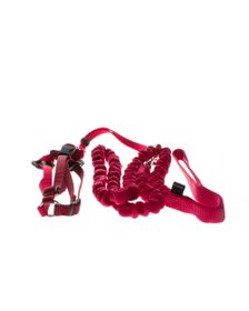 Easy Walk - Cat Harness And Collar - Red - Large