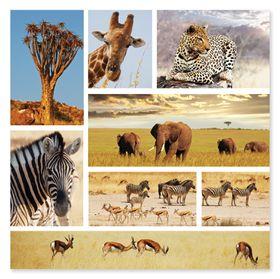 Melissa & Doug Safari Snapshots Jigsaw
