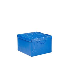 Meeco Creative Collection P.P Medium Size Storage Box - Blue