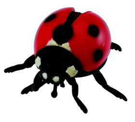 Collecta Insects-Ladybird-M