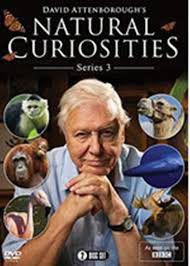 David Attenborough's Natural Curiosities: Series 3 (DVD)
