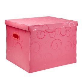 Meeco Creative Collection P.P Archive Size Storage Box - Pink