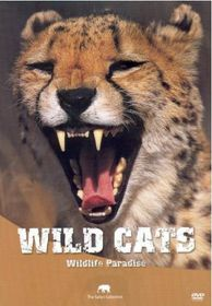 Wildlife Paradise - Wild Cats (DVD)
