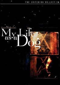 My Life As a Dog - (Region 1 Import DVD)