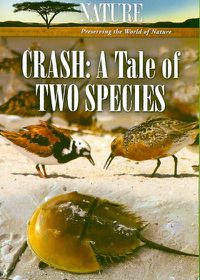 Nature:Crash a Tale of Two Species - (Region 1 Import DVD)