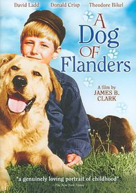 Dog of Flanders - (Region 1 Import DVD)