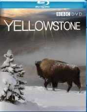Yellowstone: Tales from the Wild - (parallel import)