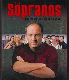 Sopranos:Comp First Season - (Region A Import Blu-ray Disc)