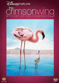 Disneynature:Crimson Wing the Mystery - (Region 1 Import DVD)